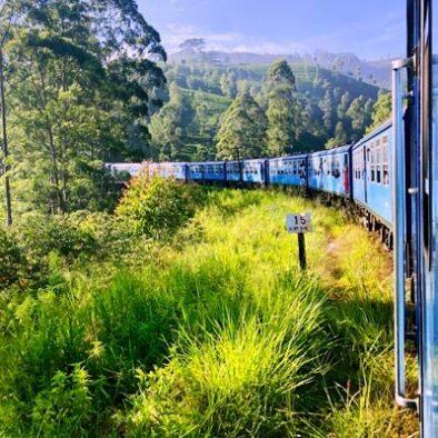 Kandy to Nanu Oya (By Train)